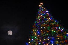 25th-Annual-Hospice-of-San-Joaquin-Tree-of-Lights-Lighting-Ceremony